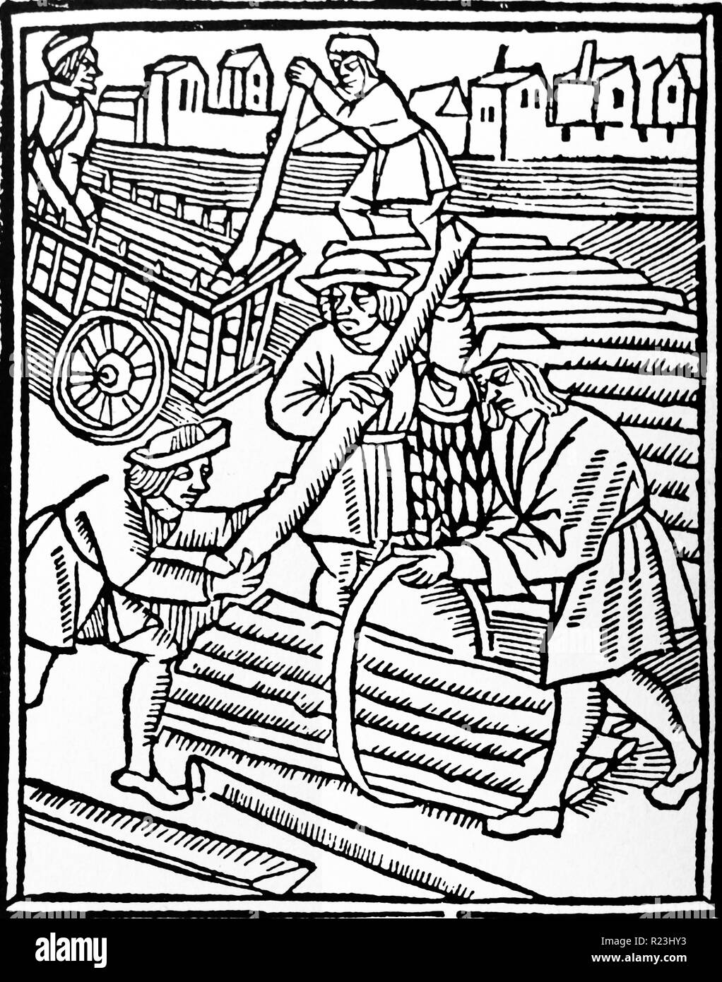 Woodcut depicting the loading of stave timber. Dated 15th Century - Stock Image