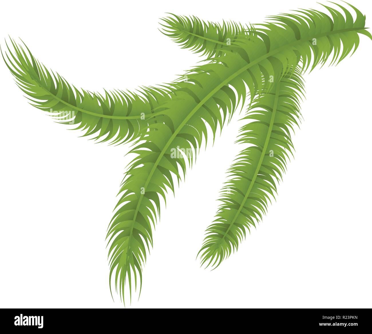 Pine tree branch icon, isometric style - Stock Vector