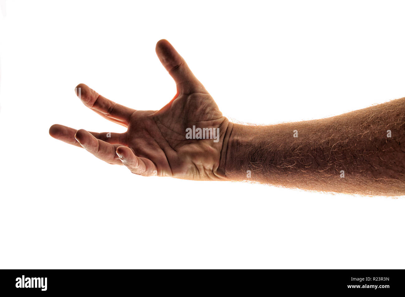 Backlit image of man's arm reaching out as if trying to grab at somethings, against white, not isolated, highly detailed fingers, hand wrist and forea - Stock Image