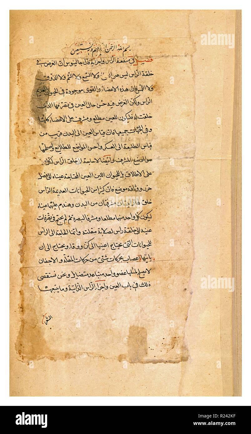 Hunayn Ibn Ishaq (808-873), Corpus Hippocraticum, Prognostic. This Latin translation of a Hippocratic treatise was originally translated by Hunayn Ibn Ishaq directly from Greek into Arabic. - Stock Image