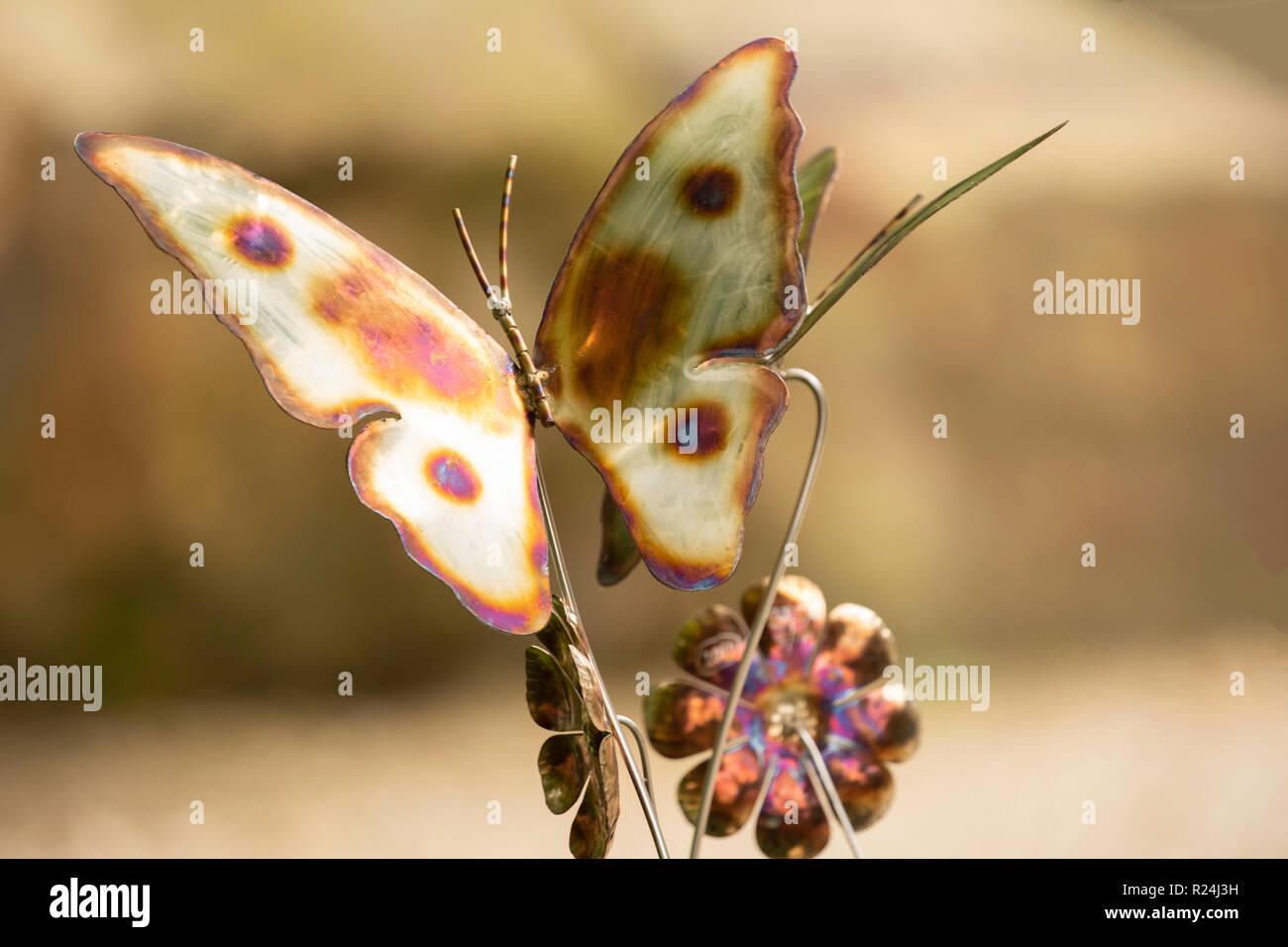 Metallic fused Butterfly. - Stock Image