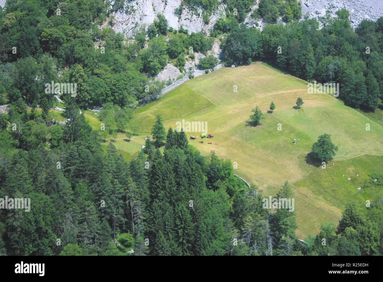 Green alpine pasture landscape, Julian Alps, Soca river valley, Alpe Adria trail, Slovenia, central Europe - Stock Image