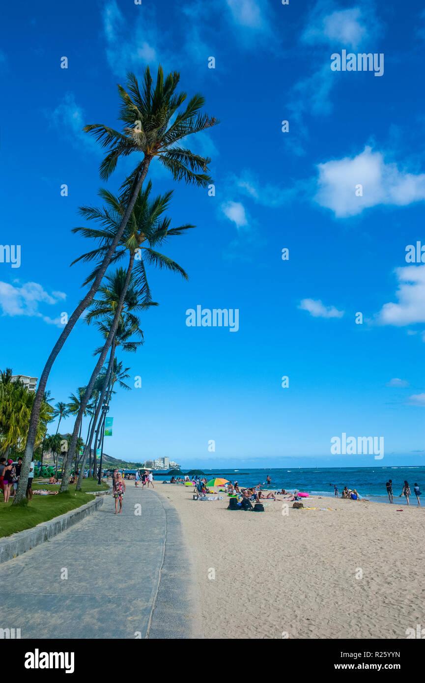 Waikiki Beach, Oahau, Hawaii, USA - Stock Image