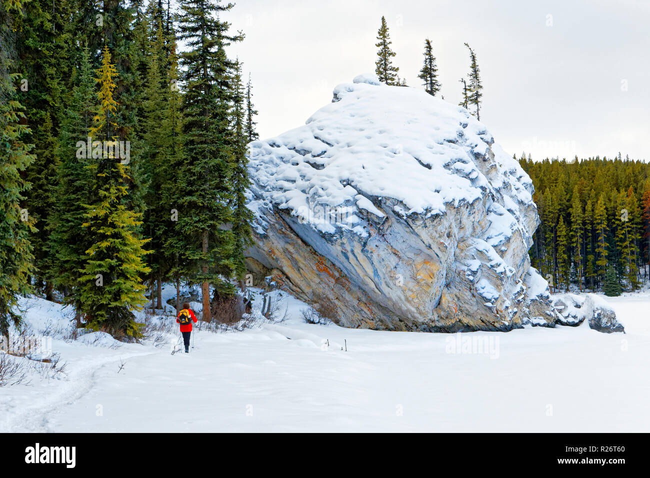 42,755.09703 woman person cold winter hike Maligne Lake with huge 30 ft tall rock boulder, Jasper National Park, hiking snowy winter conifer forest - Stock Image