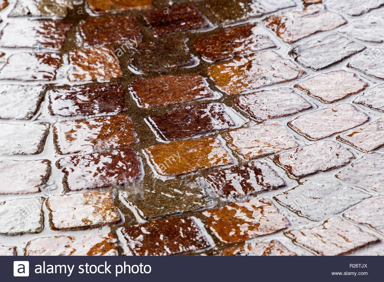 Ornamental wet curved block paving in Newbury, Berkshire, England, UK - Stock Image