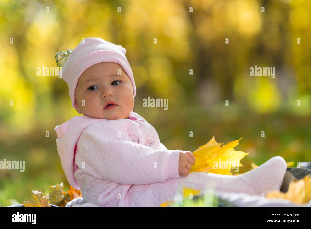 A baby in pink clothing sitting amongst yellow autumn fall leaves in a park scene