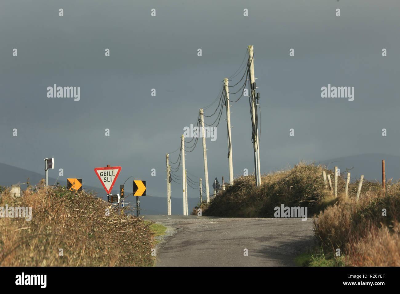 roadside scene with telegraph poles wild atlantic way, county kerry, ireland - Stock Image