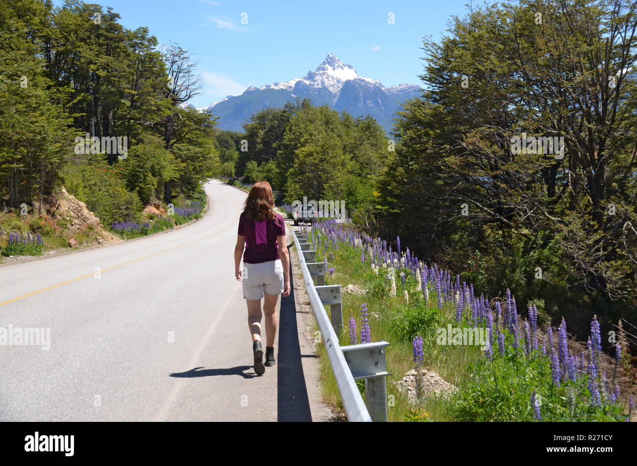 Driving the Carretera Austral, Quelat, Aysen, Chile - Stock Image