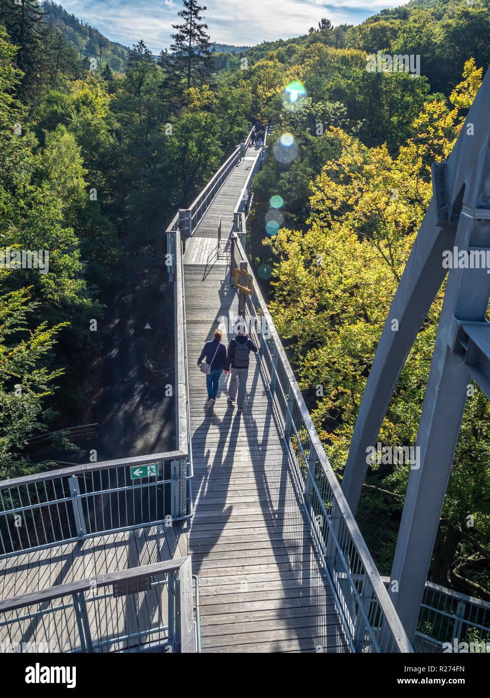 """Baumwipfelpfad"", Treetop walkway through a forest in autumn, Bad Harzburg, Harz mountain range, Lower Saxony, Germany Stock Photo"