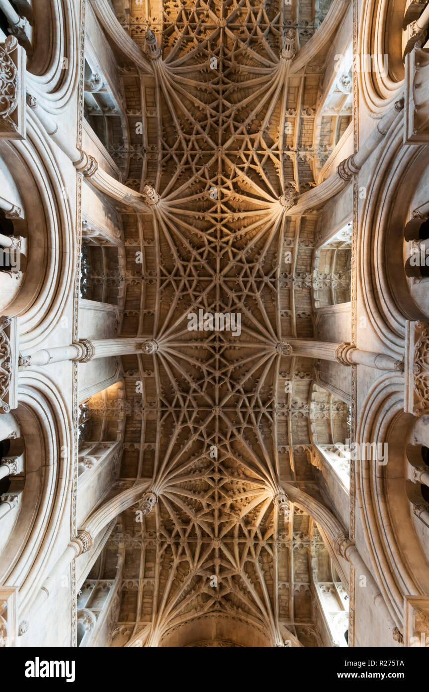 Chancel ceiling of Christ Church Cathedral, Oxford, built in 1500 by the master mason William Orchard. - Stock Image