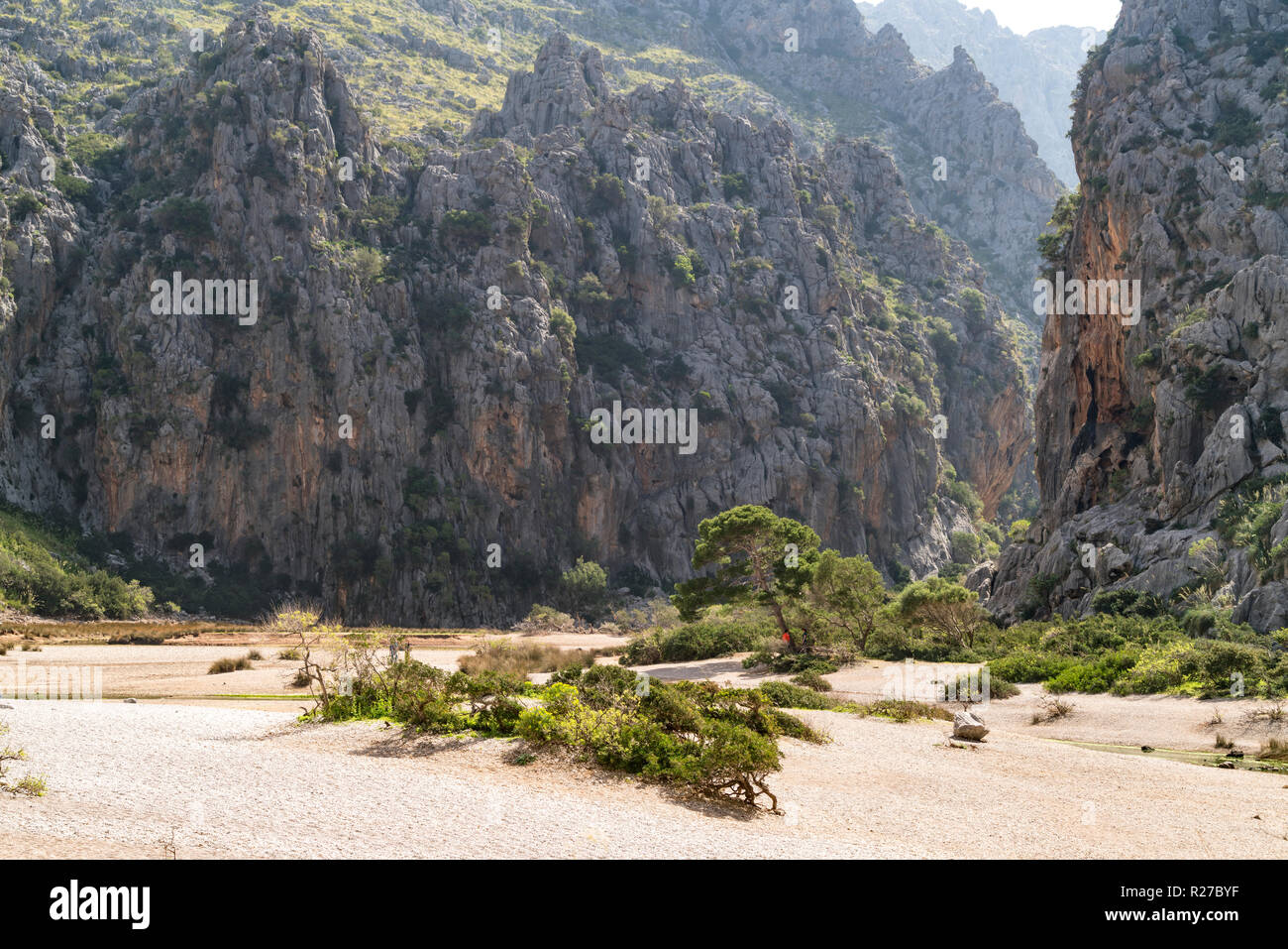 Die Stock Photos & Die Stock Images - Page 67 - Alamy