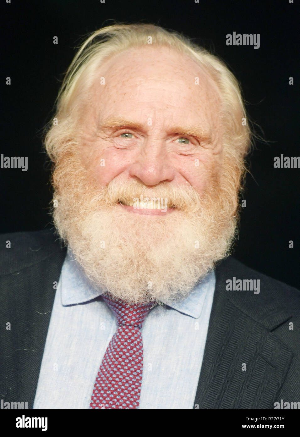 62nd London Film Festival - The Outllaw King - Premiere  Featuring: James Cosmo Where: London, United Kingdom When: 17 Oct 2018 Credit: WENN.com Stock Photo