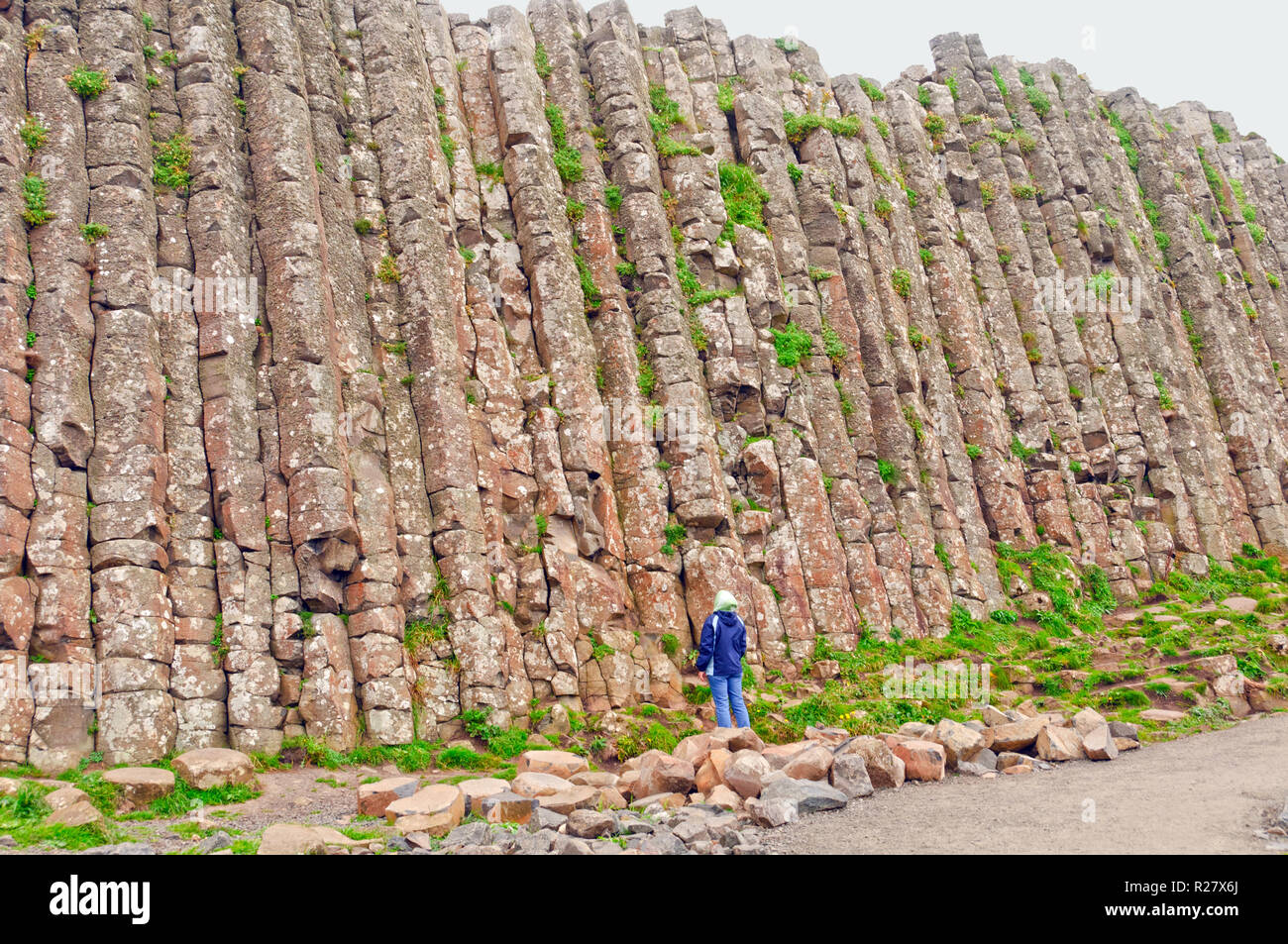 Person looking up at one wall of the Giant's Causeway in Northern Ireland - Stock Image