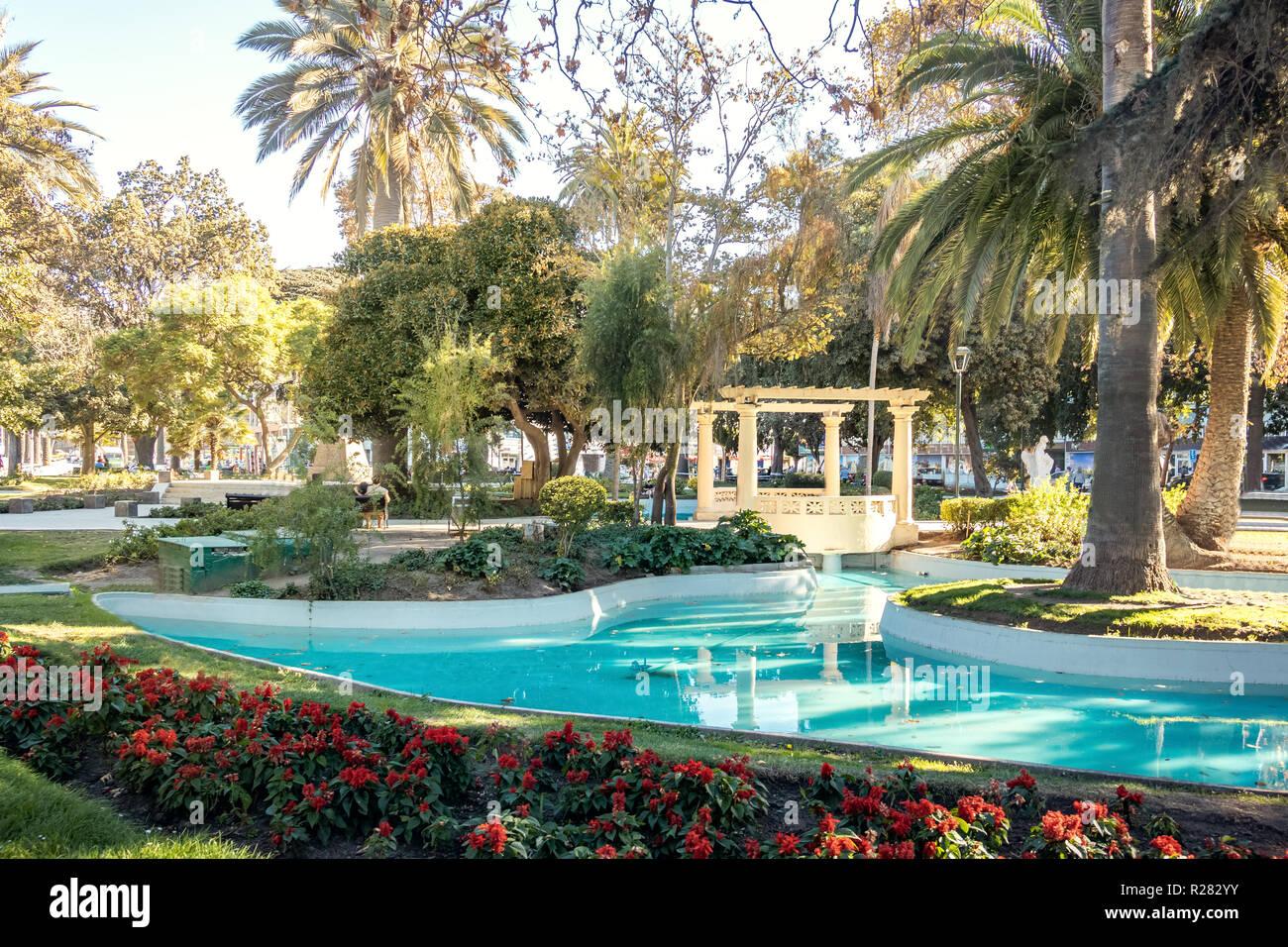 Plaza Vergara - Vina del Mar, Chile - Stock Image