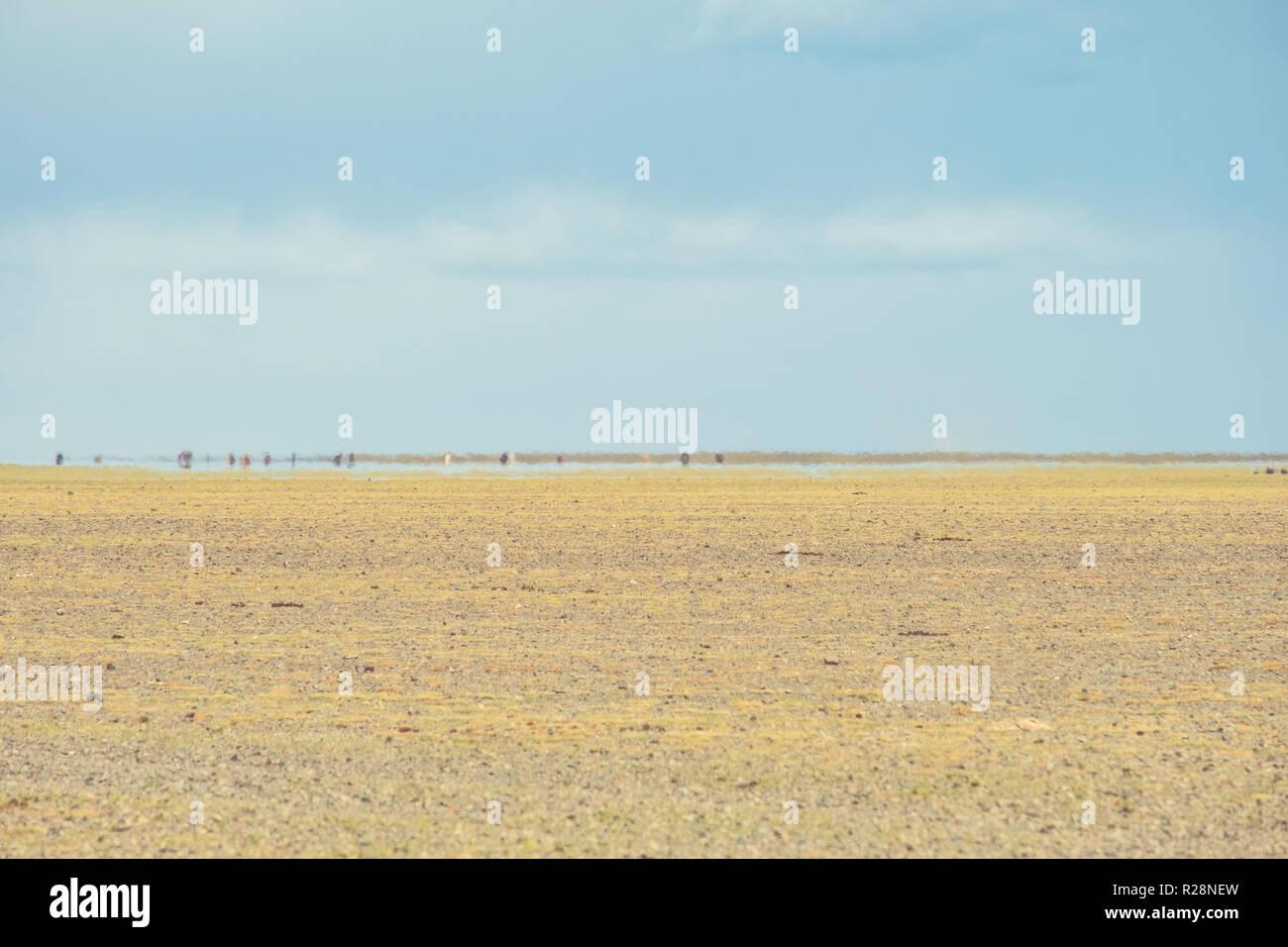 An inferior mirage on the Gobi desert in Mongolia. - Stock Image