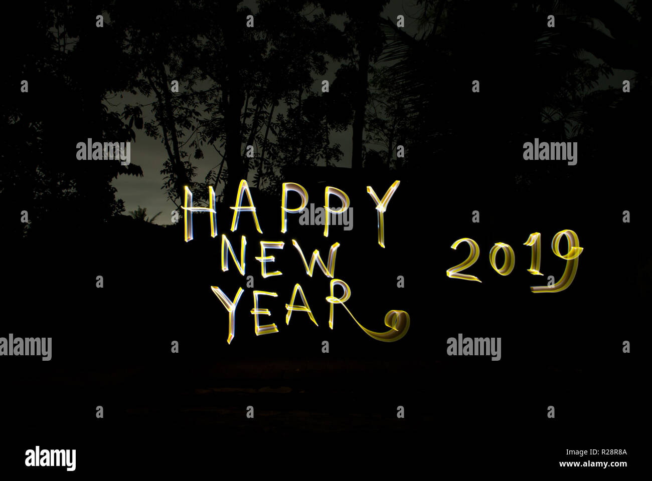Happy New Year New Pic 68