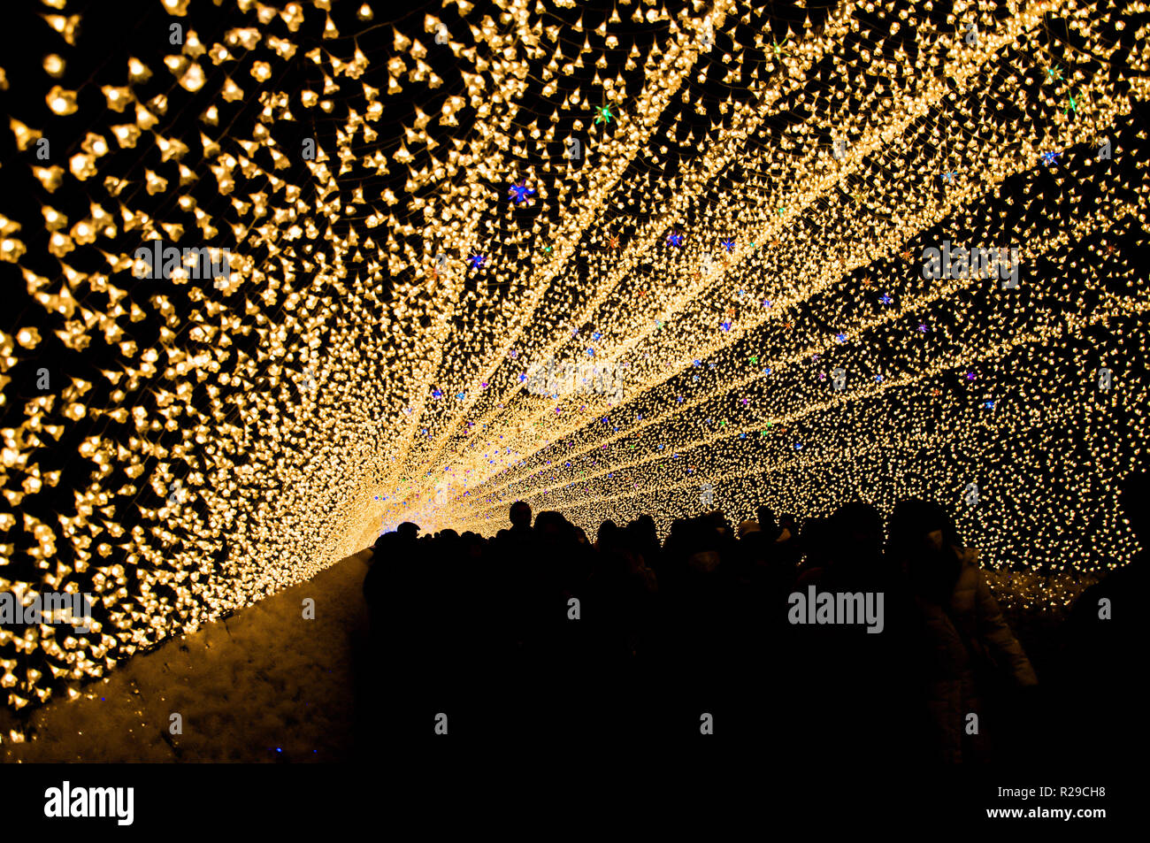 The tunnel of light in Nabana no Sato garden at night in winter, Mie, Japan - Stock Image