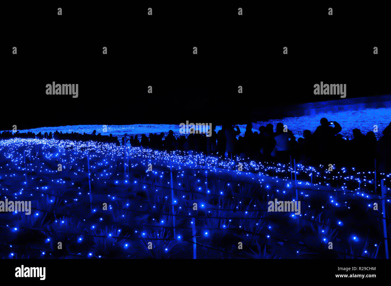 The sea of light in Nabana no Sato garden at night in winter, Nagano, Japan - Stock Image