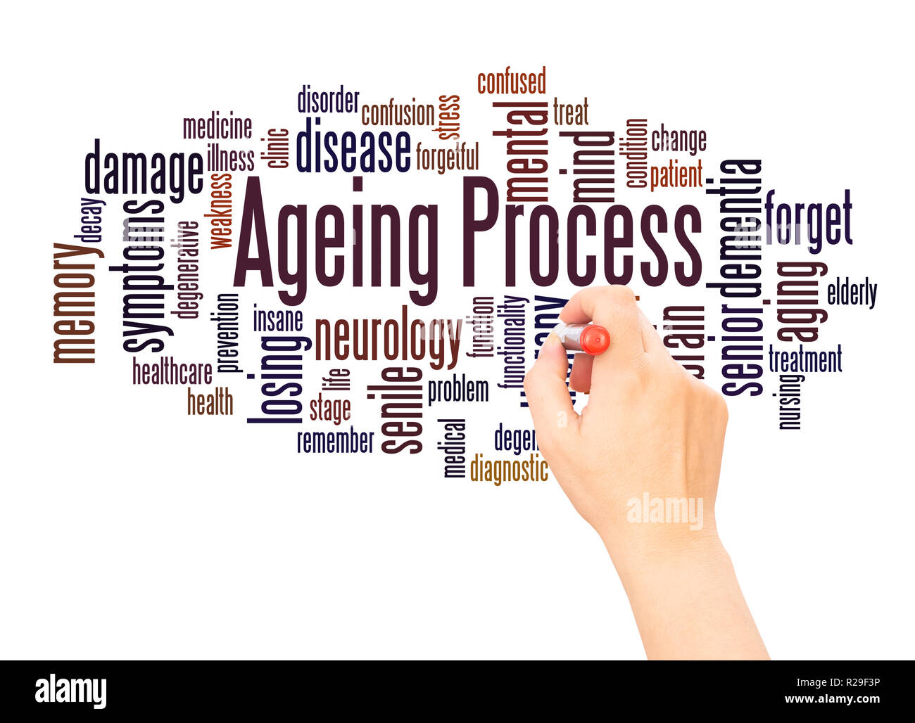 Ageing Process word cloud hand writing concept on white background. - Stock Image