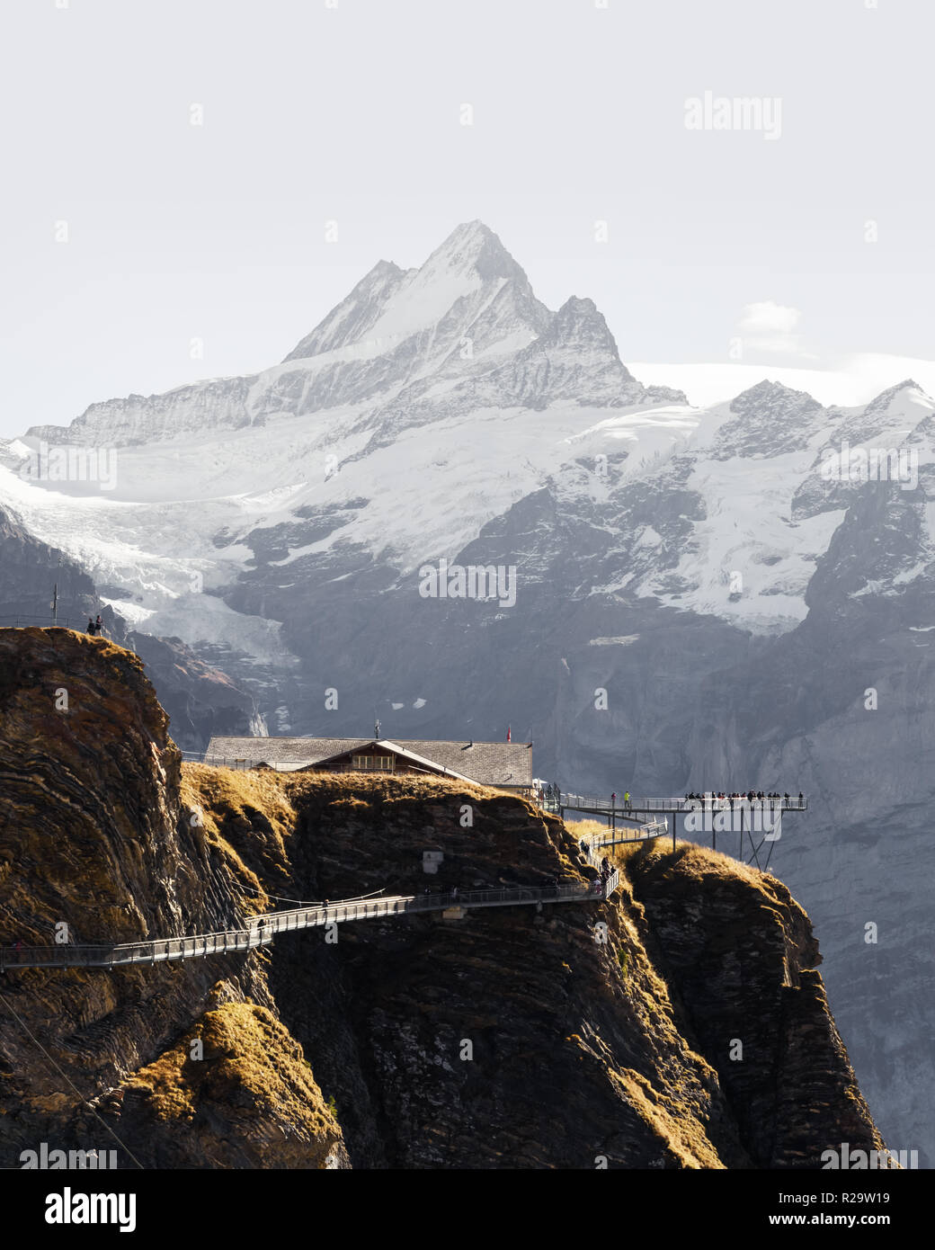 Extreme view point on the top of Grindelwald First cableway in Swiss Alps. Snowy Schreckhorn mountain peak on the background. Bernese Alps - Stock Image