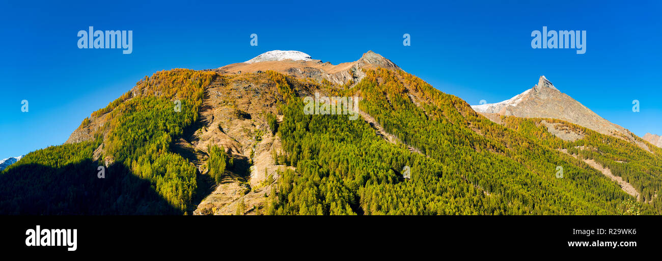 the summit of mountains with snow of Aosta Valley in a clear day and forest with first colors of autumn, Cogne - Italy - Stock Image