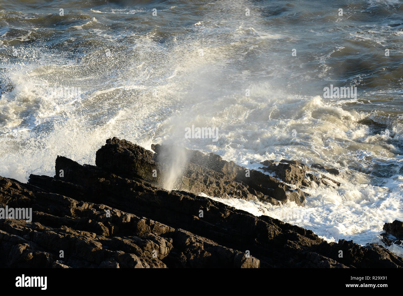 Blow hole on sea cliffs emits spray through fissure between limestone  bedding planesand a loud hissing sound. Stock Photo