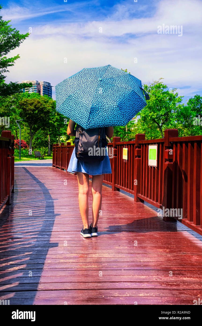 A chinese woman holding an umbrella walking on a wooden bridge over water within the Futian Mangrove Ecological Park in Shenzhen China on a sunny day. - Stock Image