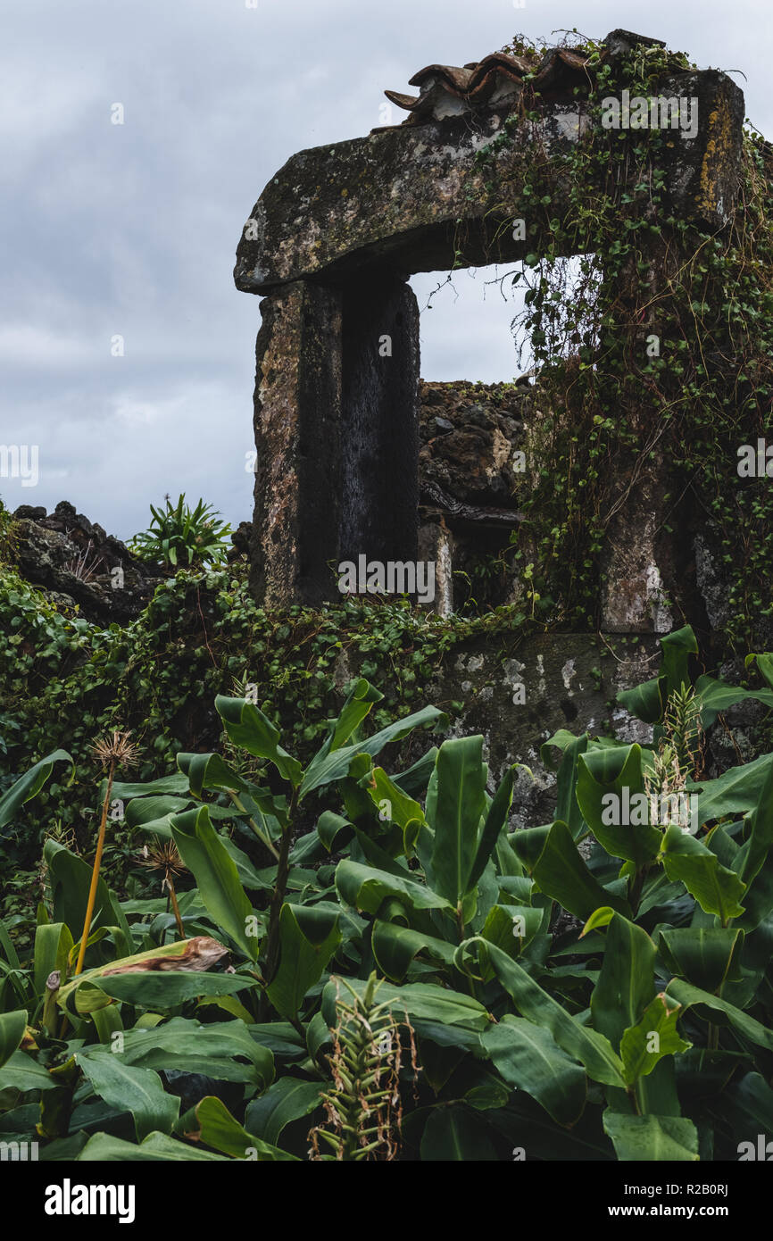 Overgrown ruins on Terceira Island in the Portuguese Azores. - Stock Image