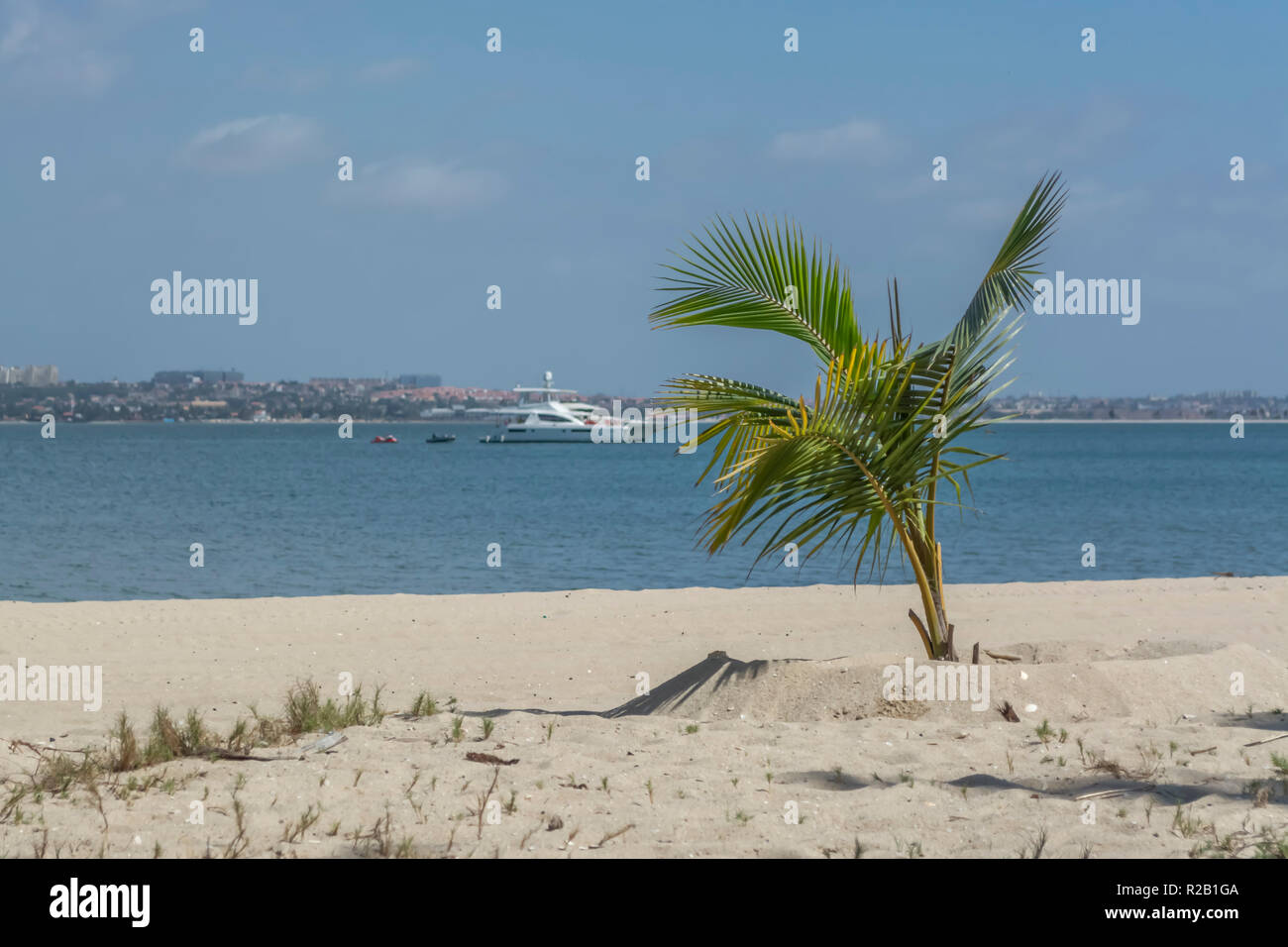 View of palm trees on beach, and boats on water, on the island of Mussulo, Luanda, Angola... - Stock Image