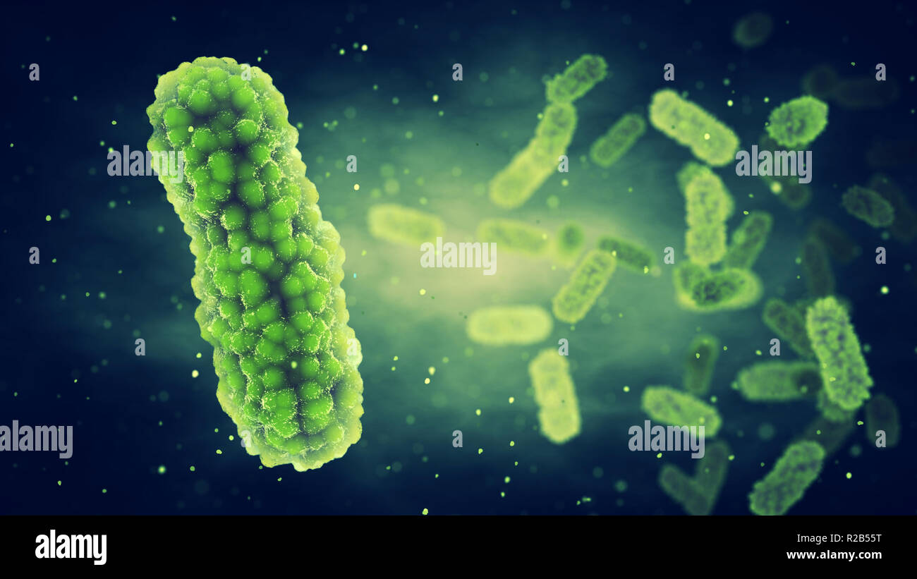 Pathogenic Bacteria , Germ infection and Epidemic bacterial disease - Stock Image