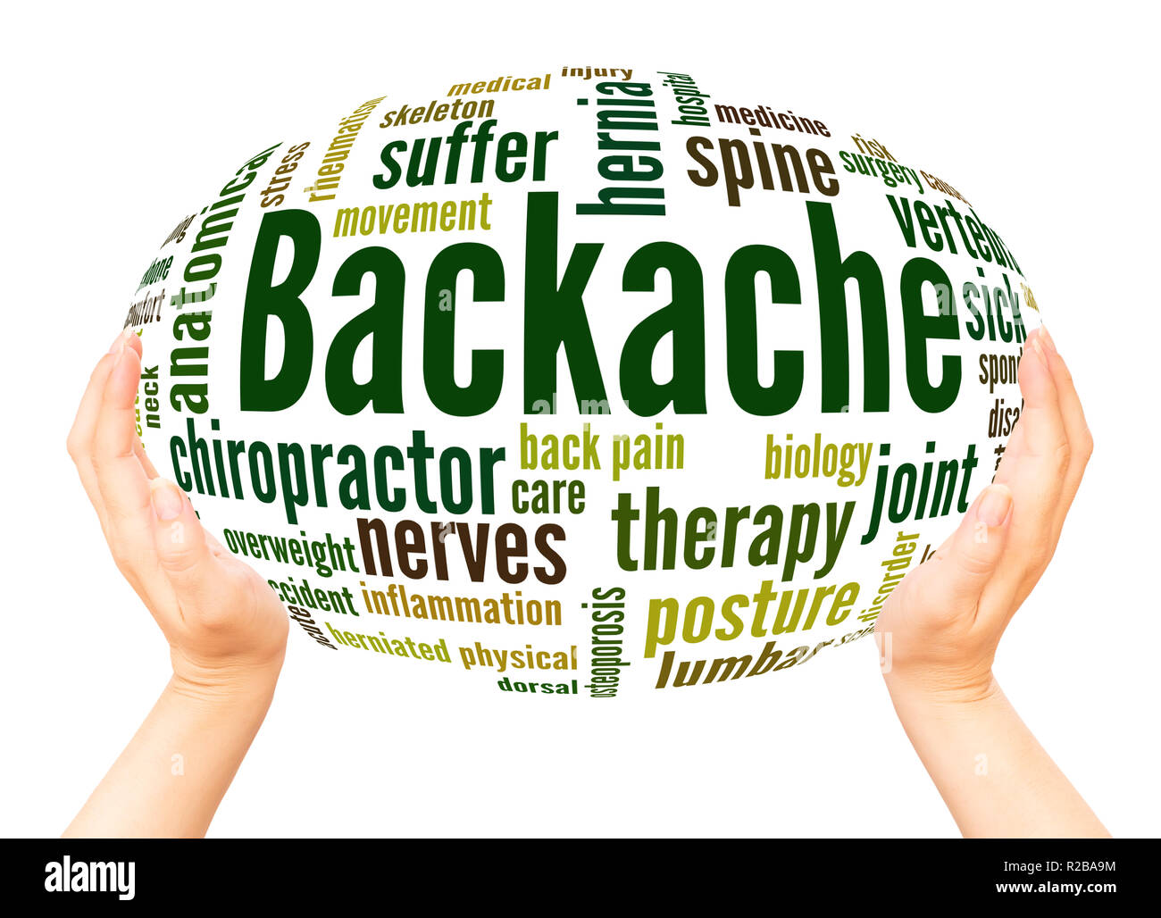 Backache word cloud hand sphere concept on white background. - Stock Image