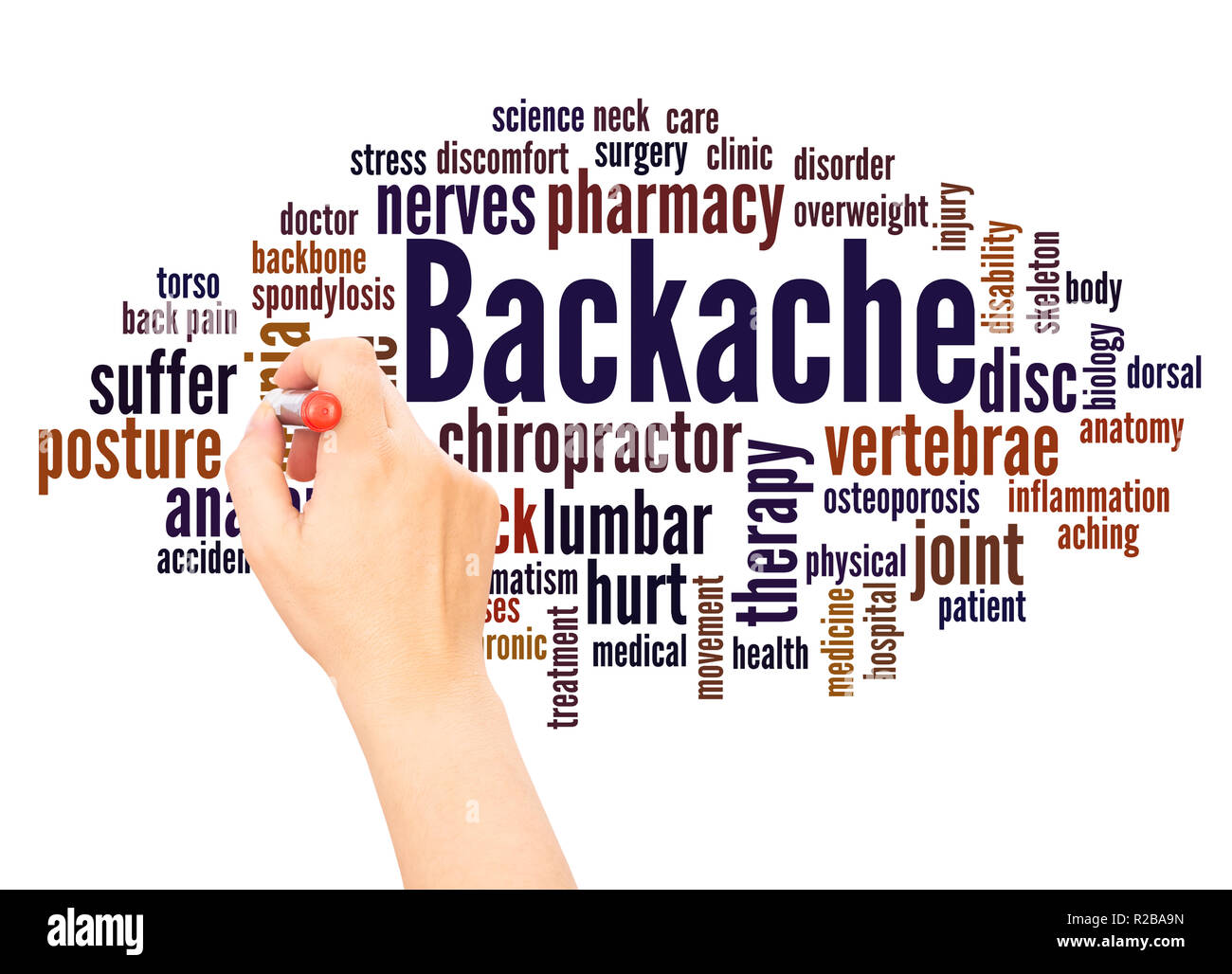 Backache word cloud hand writing  concept on white background. - Stock Image