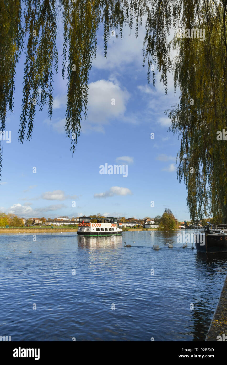 RIVER THAMES, WINDSOR, ENGLAND - NOVEMBER 2018: Tourist sightseeing boat cruising along the River Thames near Windsor, with view framed by the hanging - Stock Image