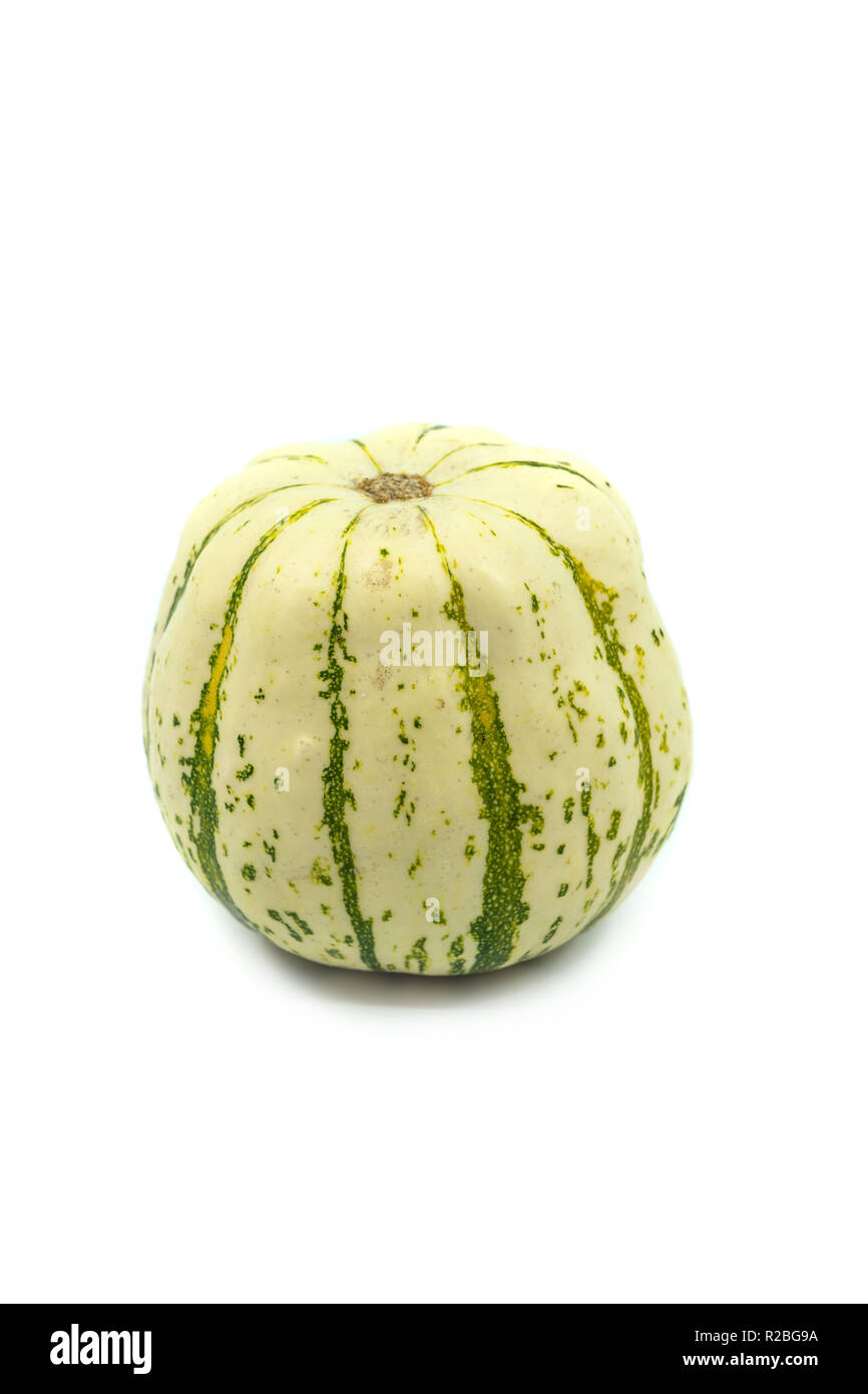 Single round green and white ornamental pumpkin or gourd with speckled rind on a white background with copy space. - Stock Image
