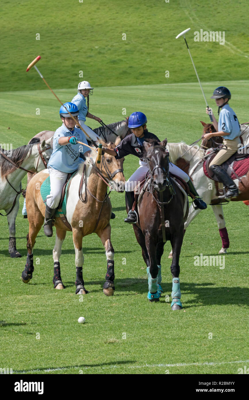 Waikii, Hawaii - A novice match at the Mauna Kea Polo Club. The club plays Sunday afternoons on the slopes of the dormant volcano, Mauna Kea. - Stock Image