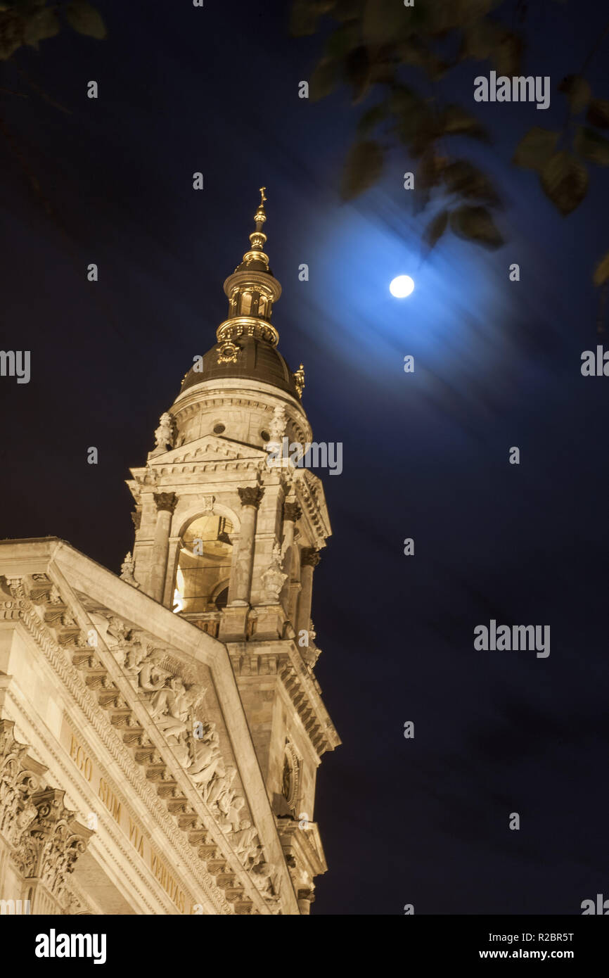 St.Stephen's Basilica and full moon with tree leaves - Stock Image