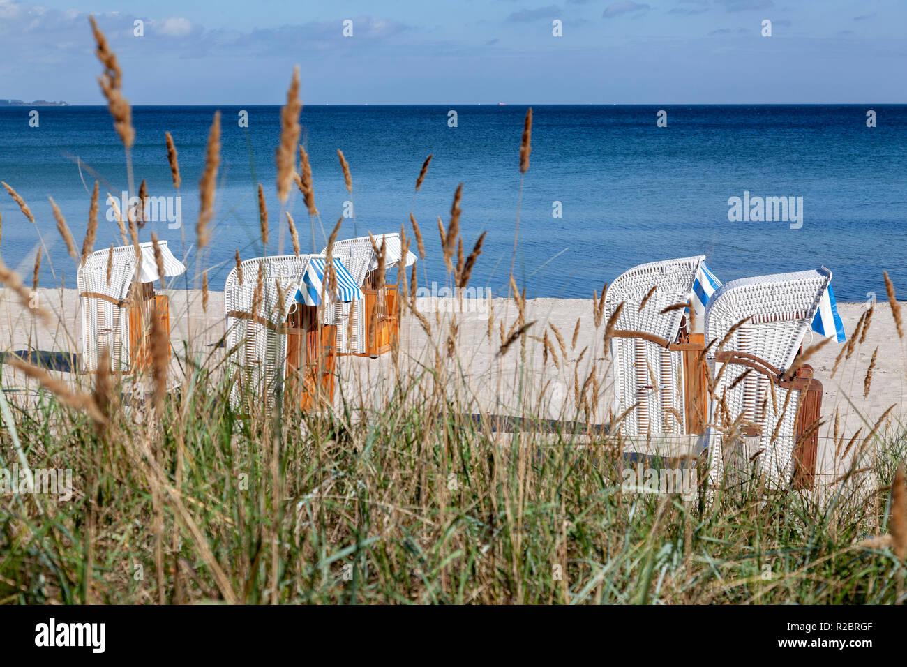 Strandkörbe an der Ostsee - Stock Image