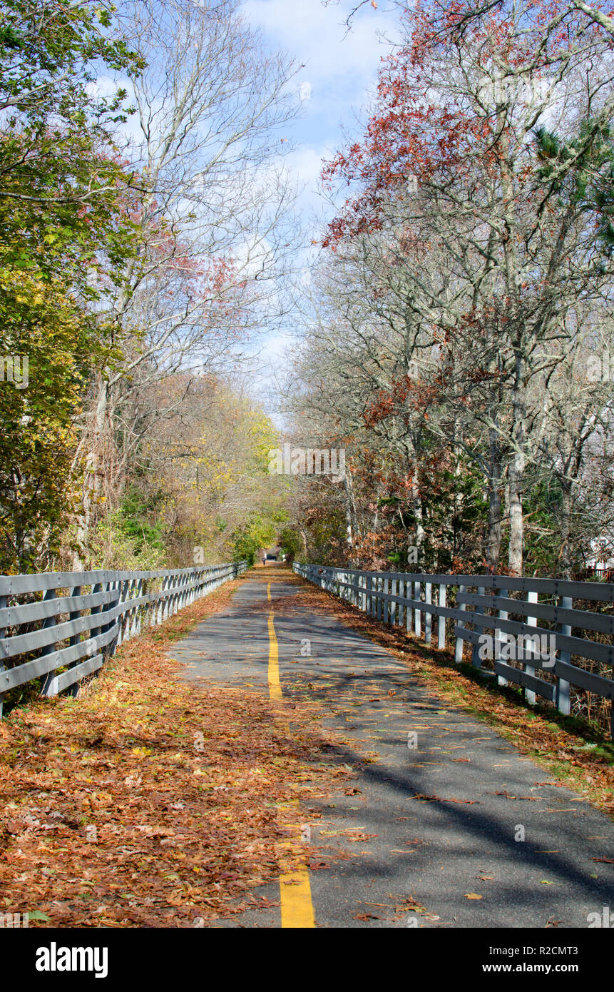 Tranquil Falmouth, MA Shining Sea Bikeway popular for walking on a quiet November day with fallen leaves, trees, railings and yellow line on pavement - Stock Image