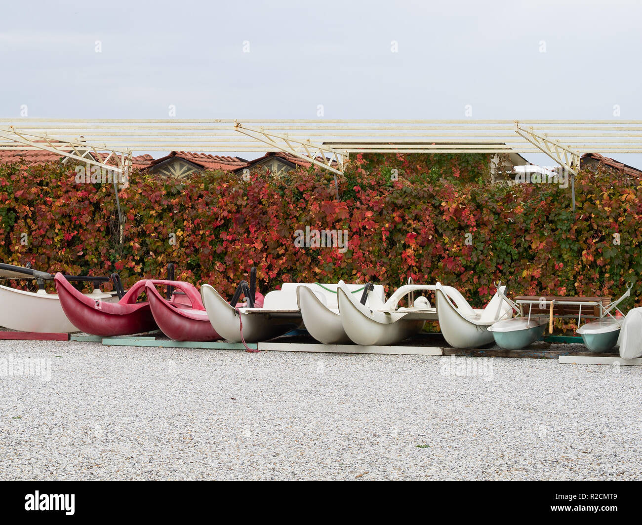small plastic rowing boats storaged in a row near a hedge of Virginia creeper with red leaves during the fall,  waiting for summer holidays - Stock Image