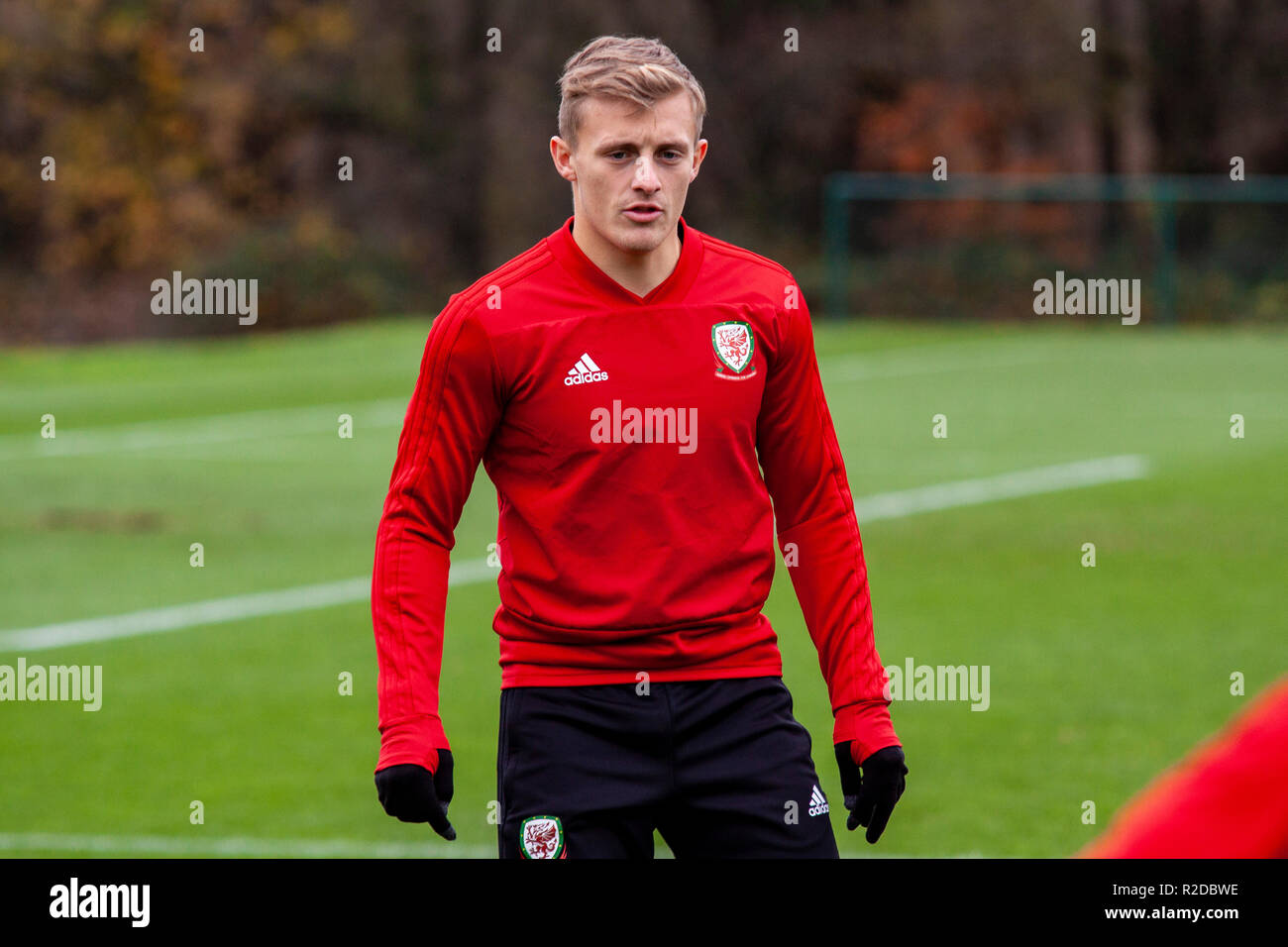 Cardiff, Wales. 15th November, 2018. Wales train ahead of their upcoming friendly against Albania. Lewis Mitchell/YCPD. Credit: Lewis Mitchell/Alamy Live News Stock Photo