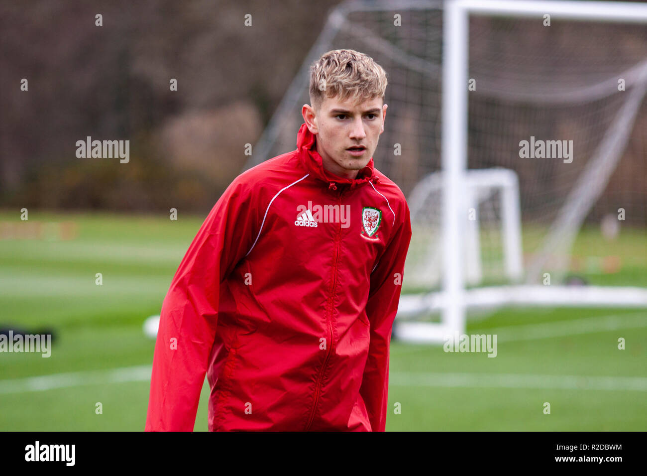 Cardiff, Wales. 15th November, 2018. Wales midfielder David Brooks trains ahead of their upcoming friendly against Albania. Lewis Mitchell/YCPD. Stock Photo
