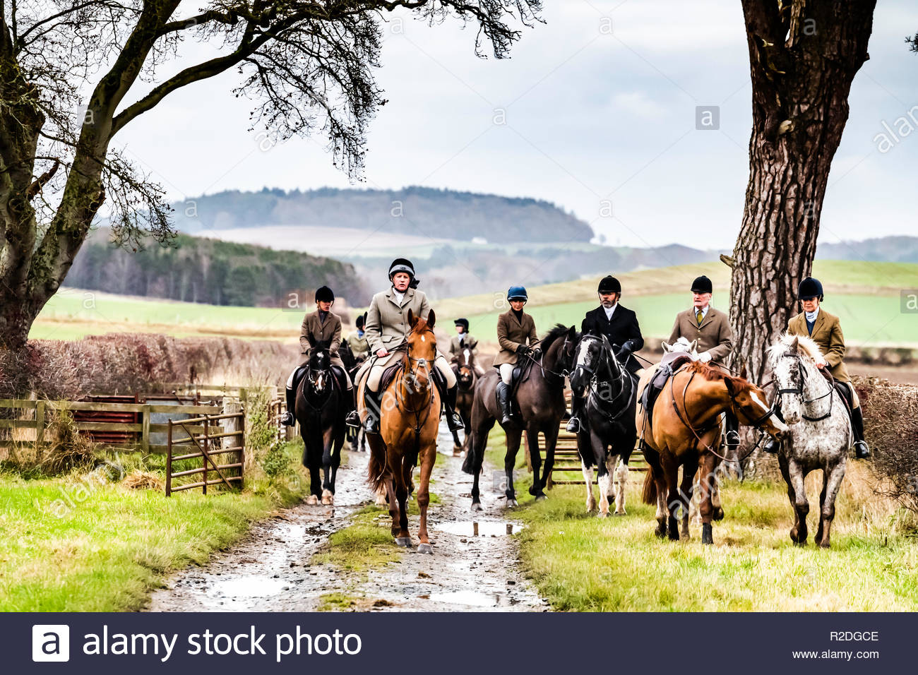 Smailholm, Kelso, Scottish Borders, UK. 19th November 2018. Mounted followers of the Duke of Buccleuch Foxhounds make what they can of a damp Monday near Kelso in the Borders. Credit: Chris Strickland / Alamy Live News Stock Photo