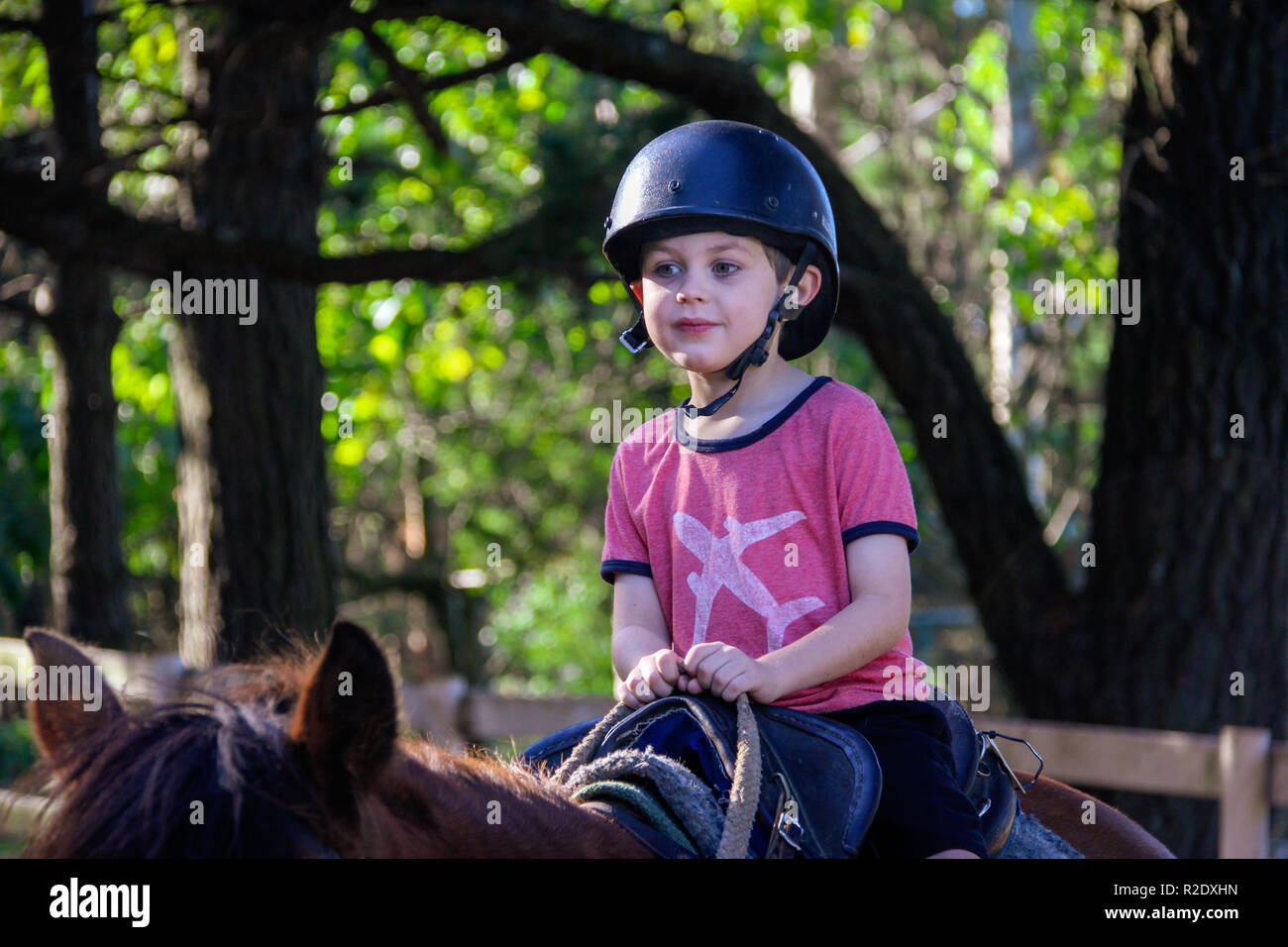 Authentic close up of young caucasian boy, age 8 – 10, having fun, unplugged, riding a horse outside with sunlight filtering through trees in paddock - Stock Image