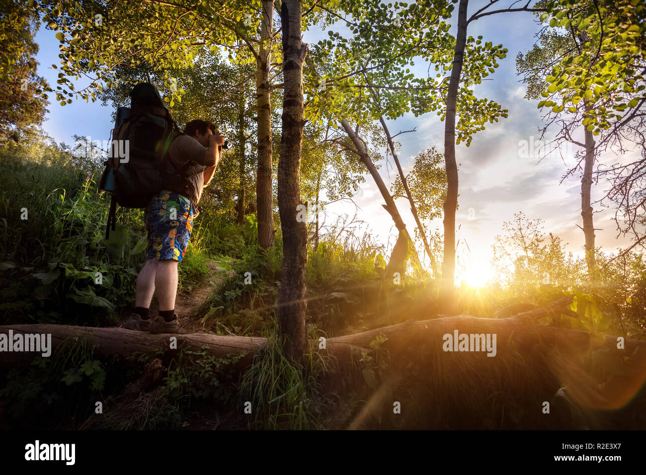 Man with backpack and camera in the summer forest at sunset sky background - Stock Image