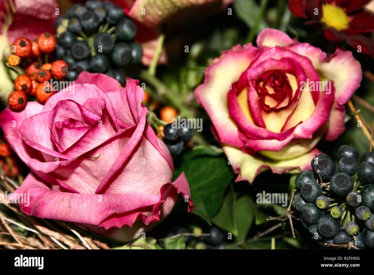 140 cm Roses BUSCH Zartgelb