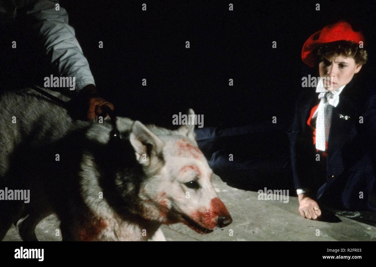 White Dog  Year : 1982 USA Director : Samuel Fuller Kristy McNichol - Stock Image