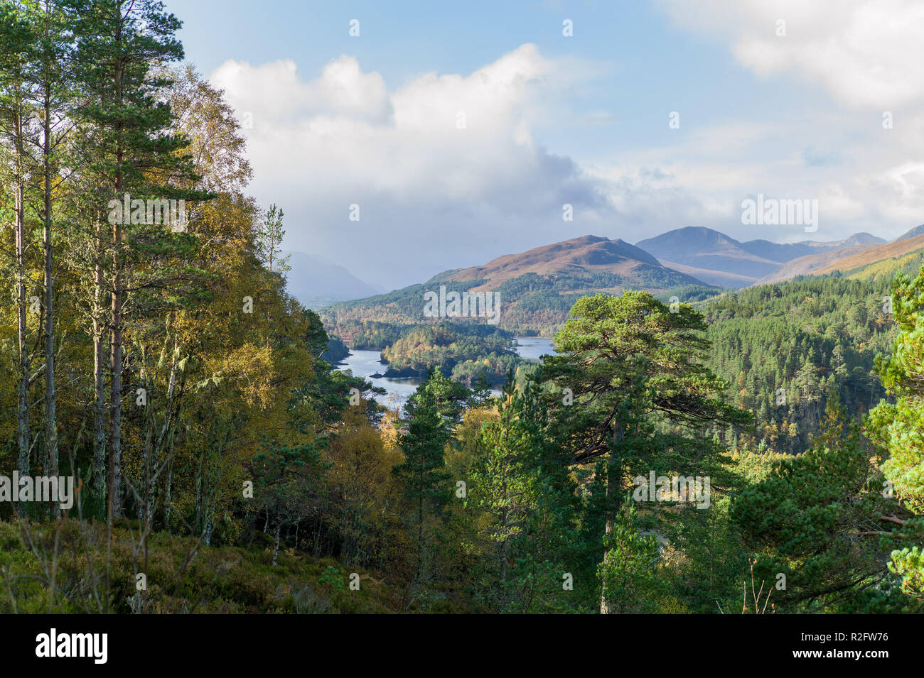 Loch Beinn a Mheadhain from the Viewpoint Trail in Glen Affric, Highlands Scotland - Stock Image