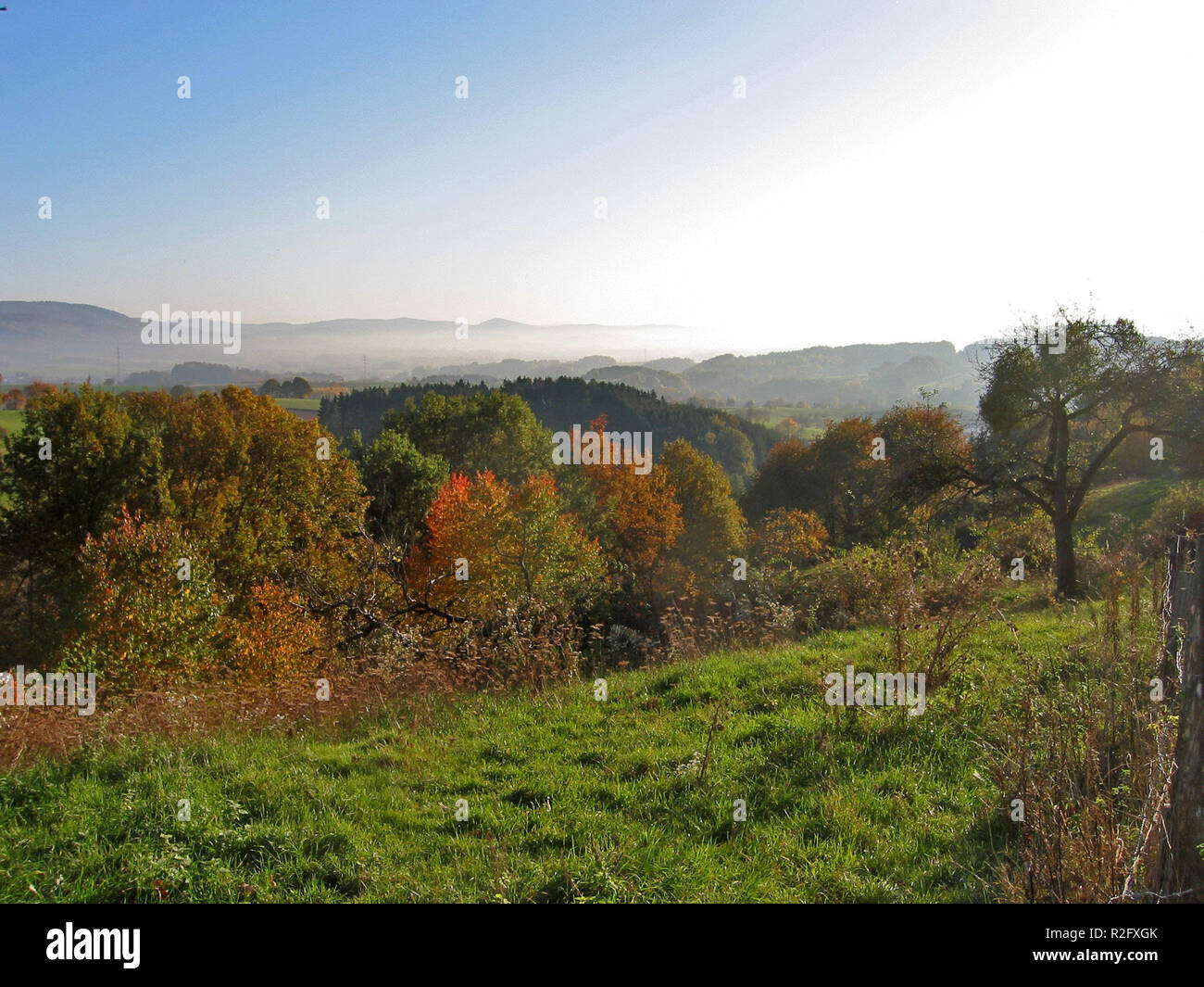 oct. colorful - Stock Image