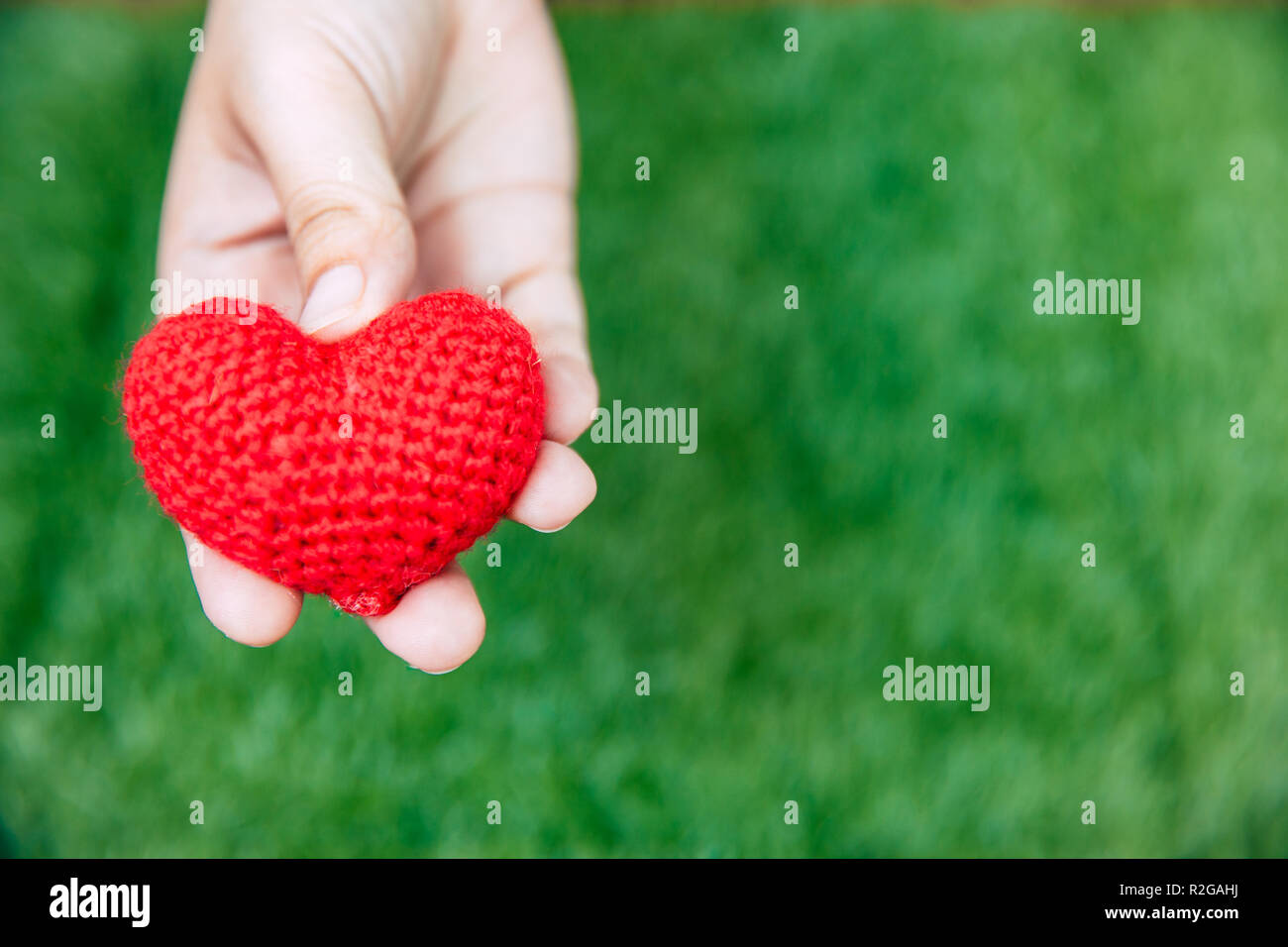 closeup hand giving heart love with green space background. - Stock Image
