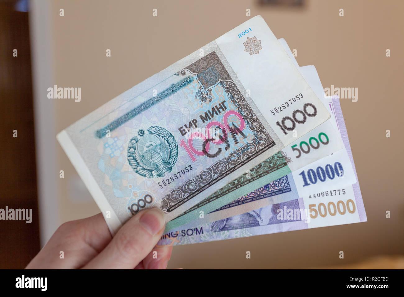 Uzbek Som, Uzbekistan - Stock Image